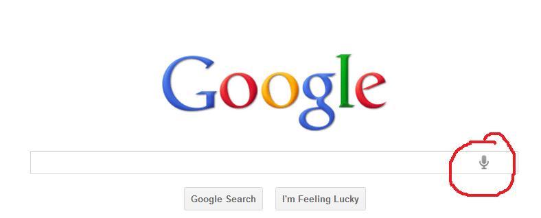 google voz
