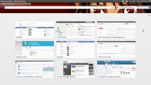 Firefox 13 con vistas en miniatura